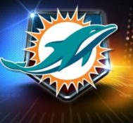 Miami Dolphins Name Kimberly Rometo Vice President & Chief Information Officer