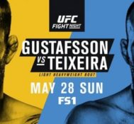Fernando Talks UFC Fight Night: Gustafsson vs. Teixeira
