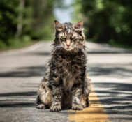 FLORIDA: Be Among The First To See PET SEMATARY!!
